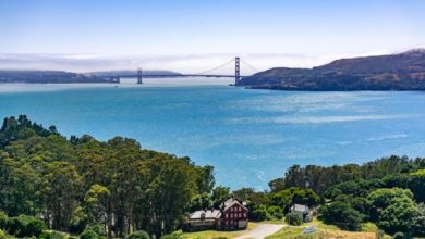 Photo of Top 5 Places For A Picnic In San Francisco